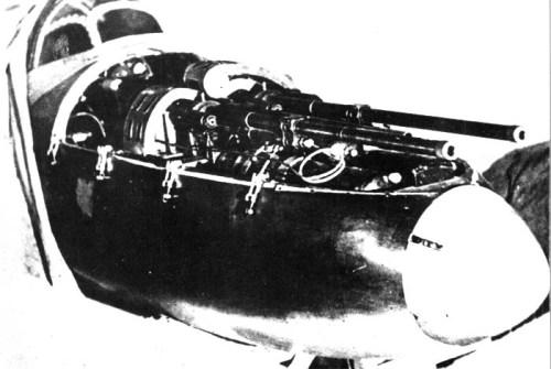 Стрелковое вооружение БИ состояло из двух пушек ШВАК калибра 20 мм